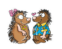 Porcupine love. Royalty Free Stock Photos