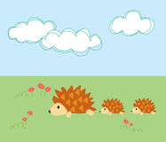 Porcupine mother with her children Stock Image