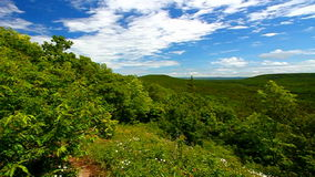 Porcupine Mountains Wilderness State Park stock footage