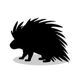 Porcupine rodent mammal black silhouette animal. Vector Illustrator Royalty Free Stock Image