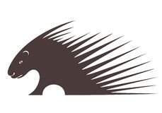 Porcupine. Vector illustration (EPS 10 Stock Photos