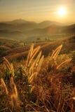 Pores do sol sobre montanhas. fotos de stock