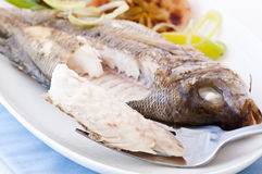 Porgy grilled Royalty Free Stock Photography