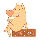 pork Arkivfoto