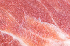 Pork background. Textured photo look fresh Royalty Free Stock Photography