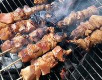 Pork barbecue charcoal roasting on grill. Delicious pork barbecue on sticks, charcoal roasting on a grill Stock Image