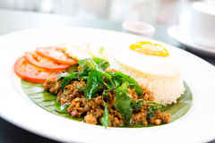 Pork basil Rice Royalty Free Stock Photos