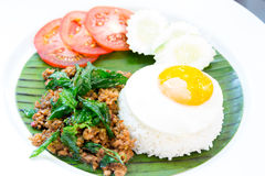 Pork basil Rice Stock Images