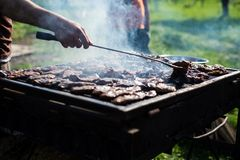 Pork, beef and fish grill Stock Image