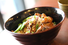 Pork bowl Royalty Free Stock Image