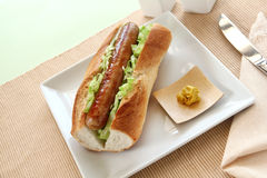 Pork And Cabbage Hot Dog Stock Images