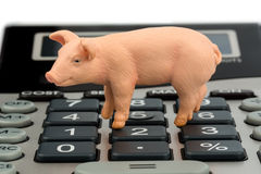 Pork and calculator Royalty Free Stock Photos