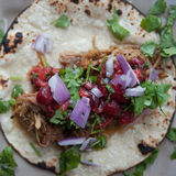 Pork Carnitas. With strawberry salsa, onions and cilantro on a corn tortiila Stock Photography