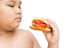 Pork cheese Hamburger in obese fat boy hand isolated Royalty Free Stock Photo