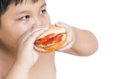 Pork cheese Hamburger in obese fat boy hand Stock Photography