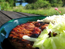 Pork chop. With rice and salad Royalty Free Stock Images