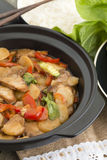 Pork Chop Suey. Chinese style stir-fry with pork and vegetables served with steamed rice Royalty Free Stock Photos