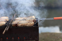 Pork chops on barbecue Royalty Free Stock Photo