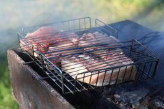 Pork chops on barbecue grill Stock Photos