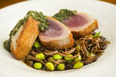 Pork chops with beans and noodles Stock Photography