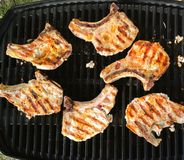 Pork chops on gril royalty free stock photography