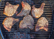 Pork chops grilled on barbecue Stock Images
