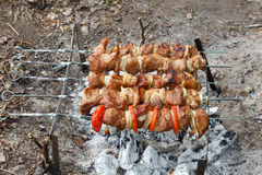 Pork cooked on the grill. Meat cooked on the coals. Pork being p Stock Photography