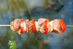 Pork cooked on the grill. Meat cooked on the coals. Pork being prepared fire. Pork kebab. Meat with onions and vegetables. Stock Image