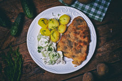 Pork cutlet with potatoes and cucumber salad Stock Images