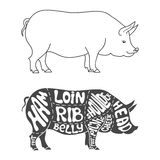 Pork cuts diagram. Hand drawn butcher cuts scheme Stock Photo