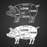 Pork cuts diagram isolated on black vector. Illustration Stock Images