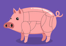 Pork cuts illustration Royalty Free Stock Images