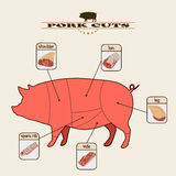 Pork cuts. Info graphic of the pork cuts on light background Stock Images