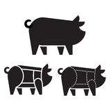 Pork cuts on pig Stock Photography