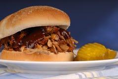 pork dragen smörgås Royaltyfri Bild