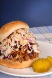 pork dragen smörgås royaltyfri fotografi