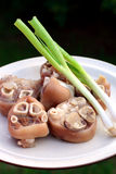 Pork feet and spring onion Royalty Free Stock Photos