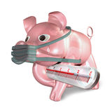 Pork flu. In white background Royalty Free Stock Images