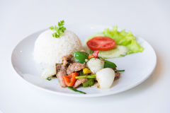 Pork with Fried Black Pepper and rice. Royalty Free Stock Images