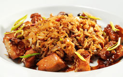 Pork with Fried Rice Stock Image