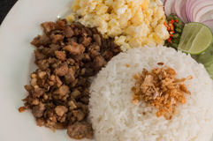 Pork fried with rice. And fried egg Stock Images