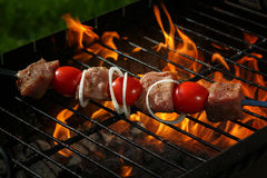 Pork on the grill Stock Image