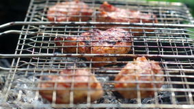 Pork on the grill. Summer barbecue concept. Royalty Free Stock Photo