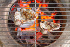 Pork grilled on charcoal Stock Images