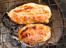 Pork grilled on charcoal. Stock Photos