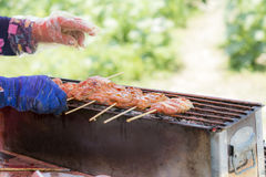 Pork grilled Stock Photography