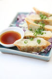 Gyoza Stock Photos