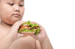 Pork hamburger on obese fat boy hand background isolated. On white, unhealthy food, junk food or fast food Stock Photo