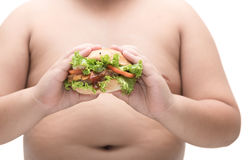 Pork hamburger in obese fat boy hand isolated. Stock Image