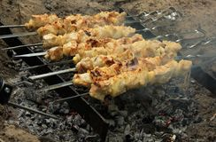 Pork kebab Stock Images